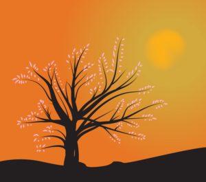 tree_fjsyakid_l